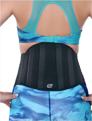 Picture of Industrial Lumbar Support