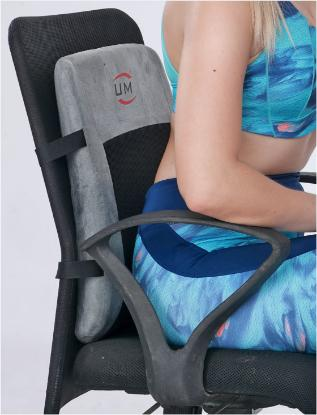 Picture of Back Rest Support - Universal