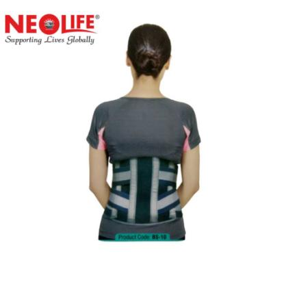 """Picture of Neolife Contoured L.S. Support 12"""""""
